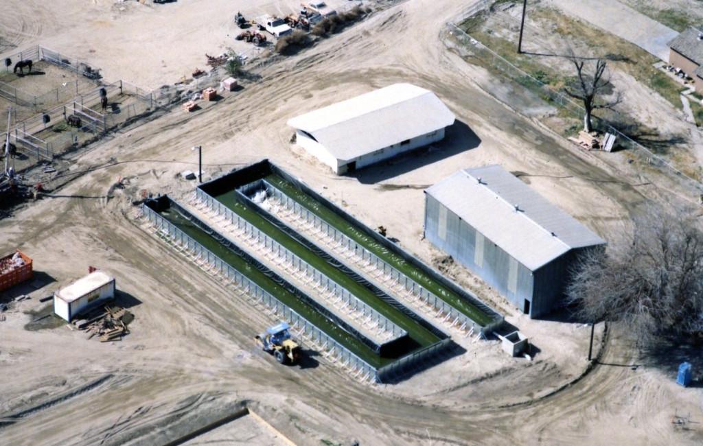 field erected tank