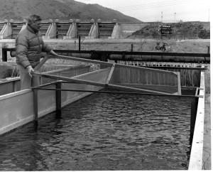 Fish Farming Tanks